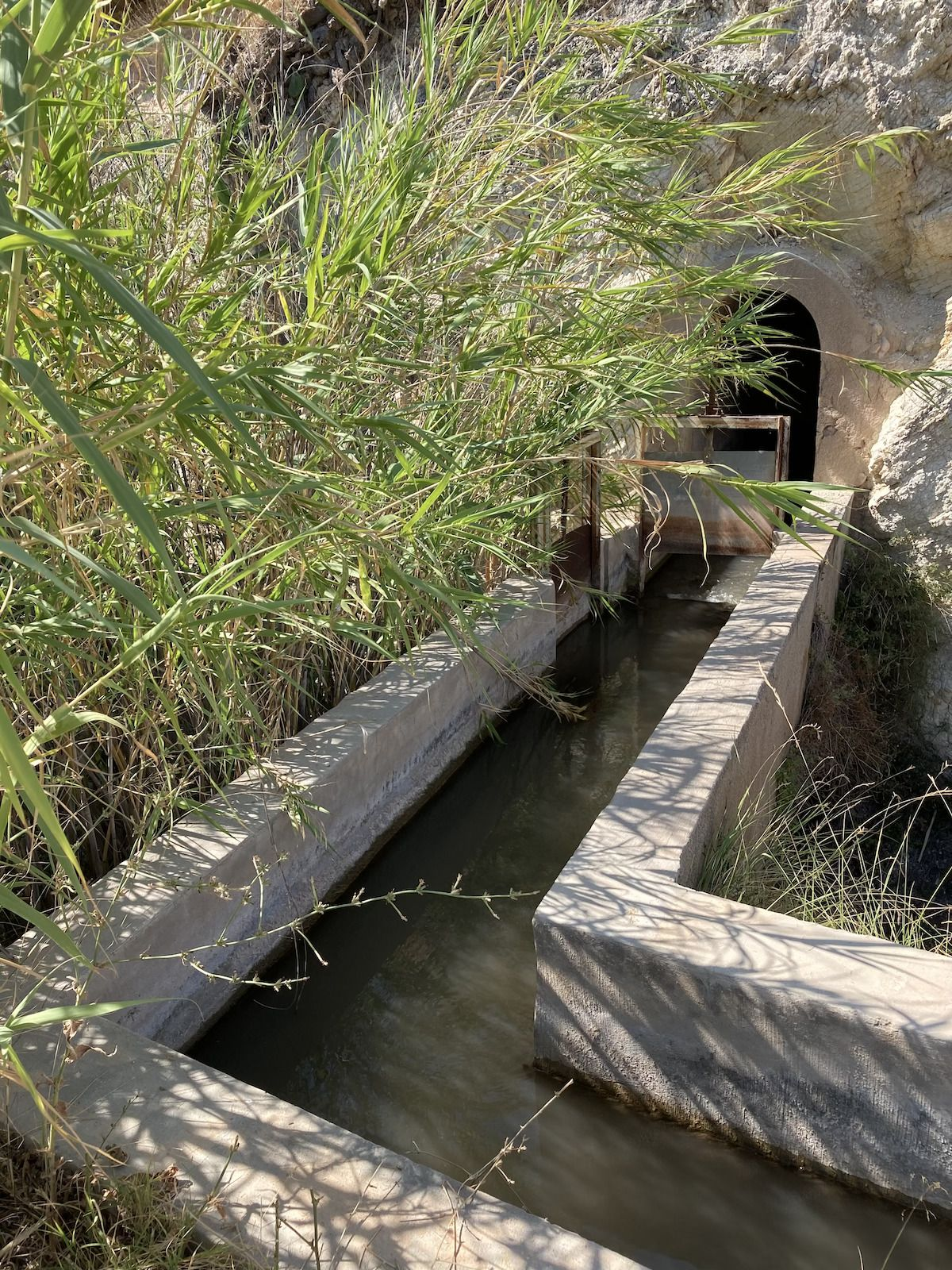 ruta riu sec juliol 8